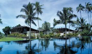 Shangri La Fijian - So-Dishy-Cox