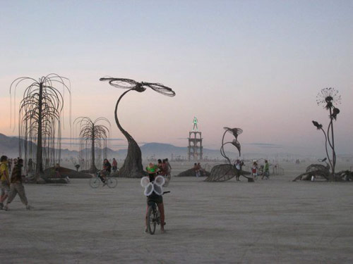wpid-burning-man-2010-