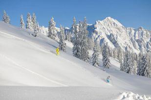291_2_SkifahrerTiefschnee03