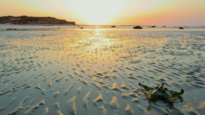 eco beach resort So-Dishy 46