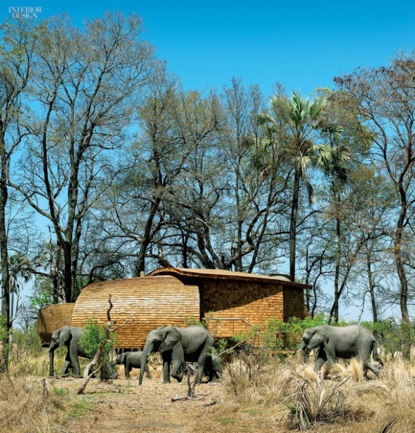 thumbs_2446-elephants-exterior-sandibe-okavango-safari-lodge-fox-browne-creative-michaelis-boyd-0715.jpg.600x0_q95